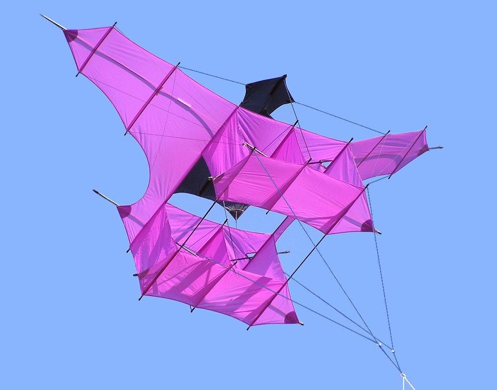 Antenne cerf-volant Cody